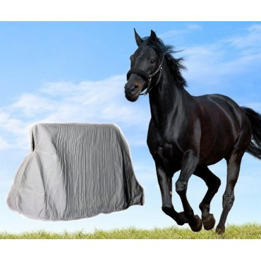 Thermo Blanket for Horses